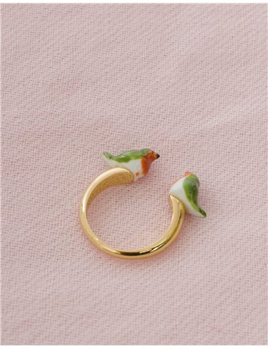 Robin birds ring